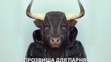 Photo of Обидное прозвище для парня: Лосяш, Покемон, Жопик и другие..